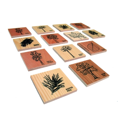 FOREST-MEMO GAME - Classic rules and yet a different game