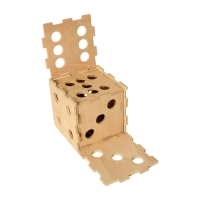 Cubiforms Dice in Dice