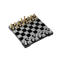 Travel chess set 16 x 16 cm